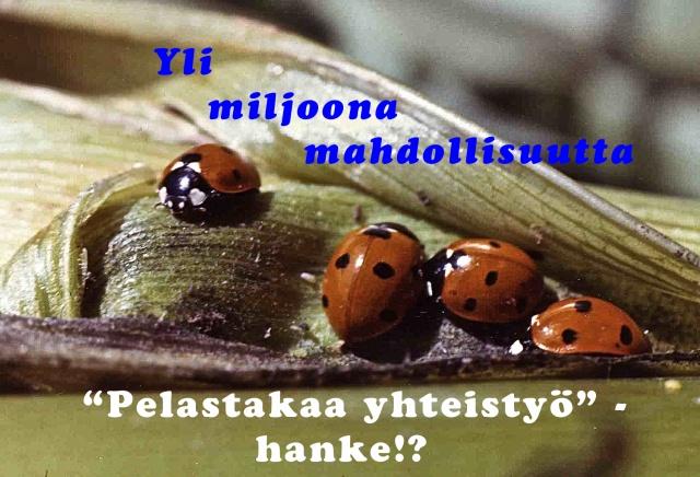 Päätoimittaja, eläkkeellä, Ari Valjakka nosti esiin, Helsingin Sanomat / Mielipide 22.2.2013,